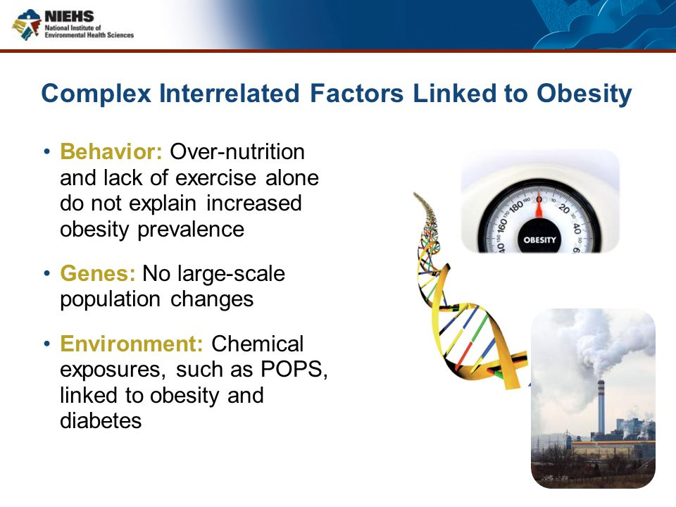 Complex Interrelated Factors Linked to Obesity