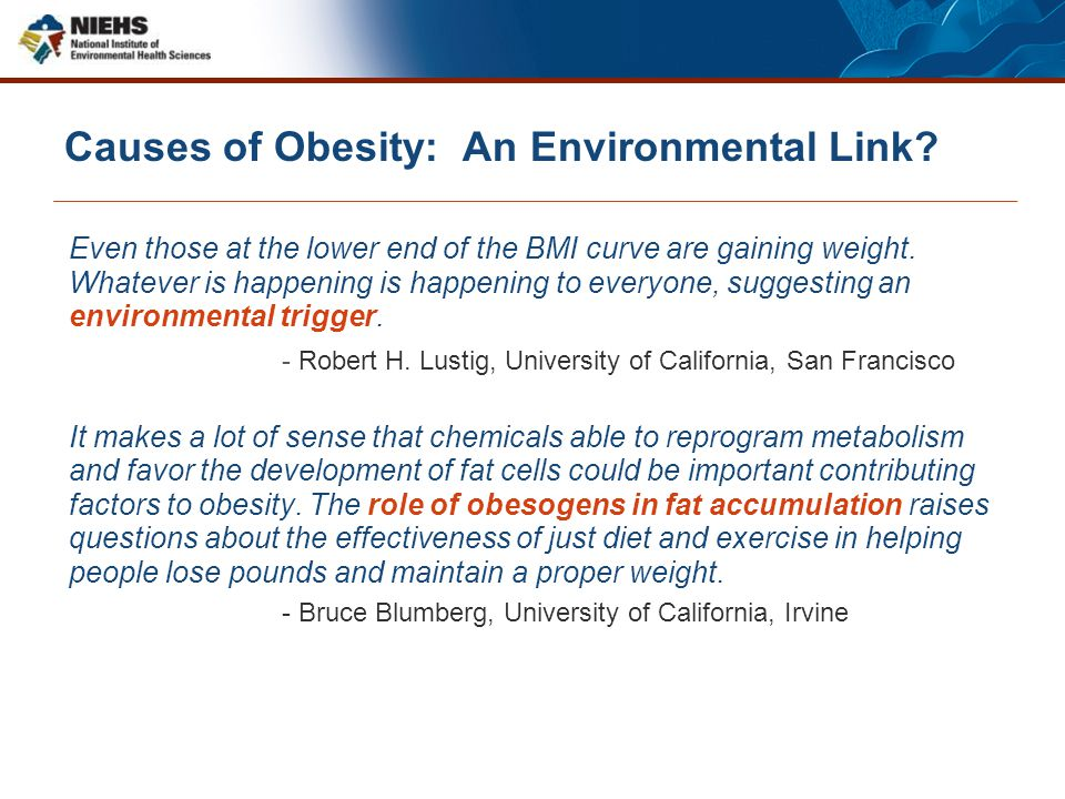 Causes of Obesity: An Environmental Link