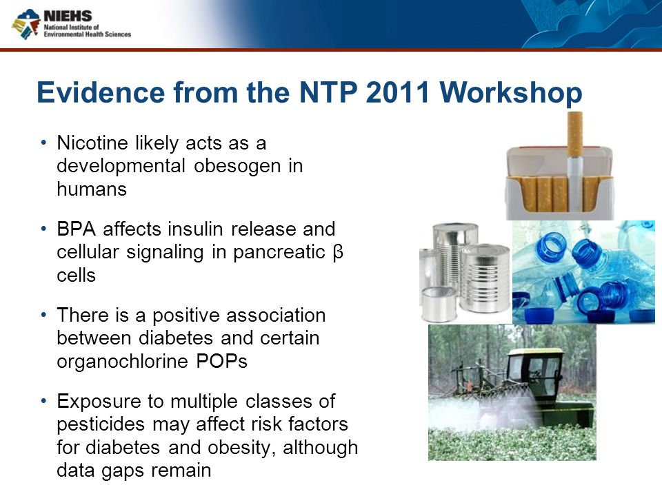 Evidence from the NTP 2011 Workshop