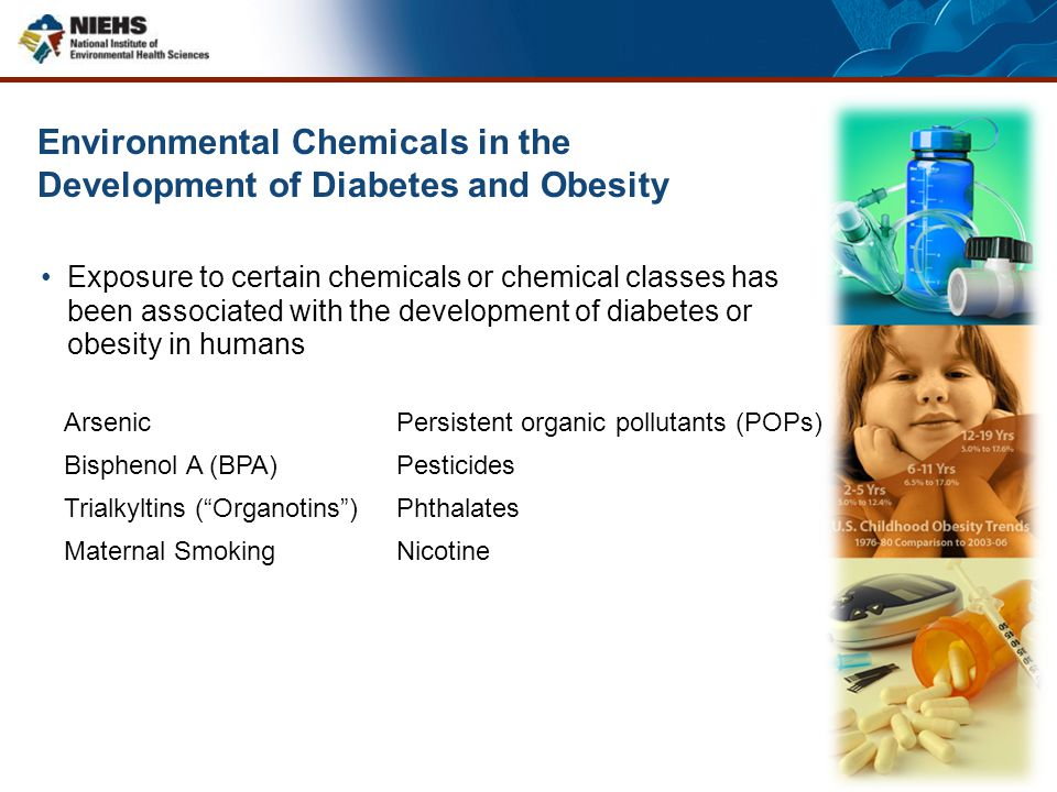 Environmental Chemicals in the Development of Diabetes and Obesity