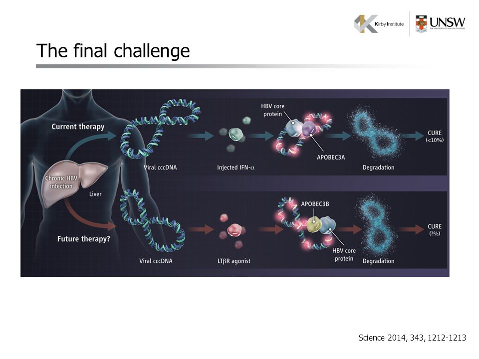 The final challenge Science 2014, 343, 1212-1213