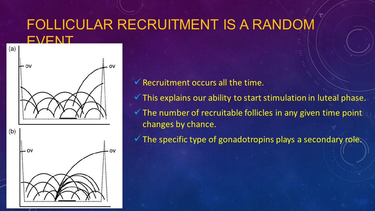 Follicular recruitment is a random event