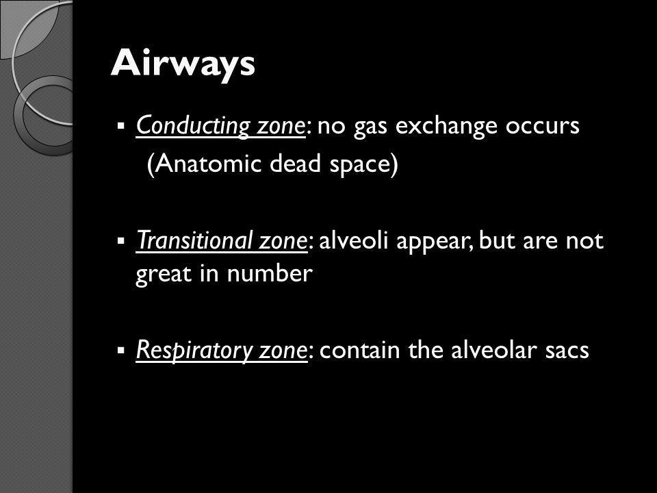 Airways Conducting zone: no gas exchange occurs (Anatomic dead space)