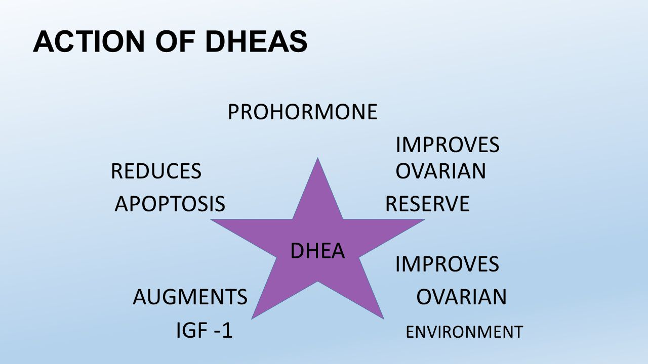 ACTION OF DHEAS IMPROVES REDUCES OVARIAN APOPTOSIS RESERVE DHEA