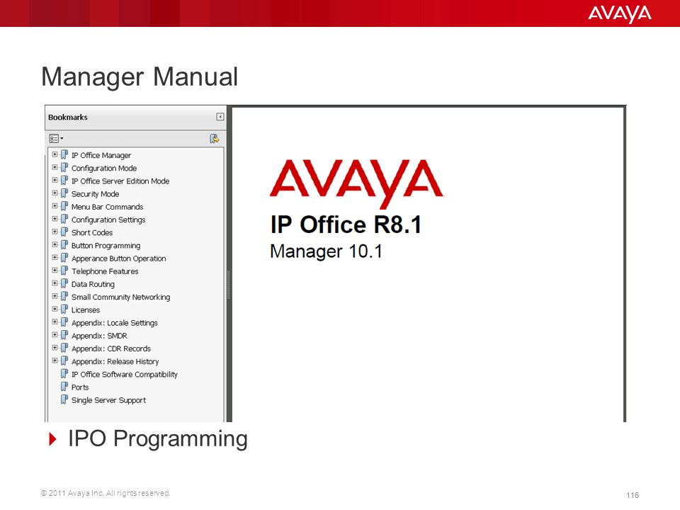 Manager Manual IPO Programming