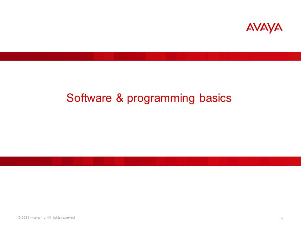 Software & programming basics
