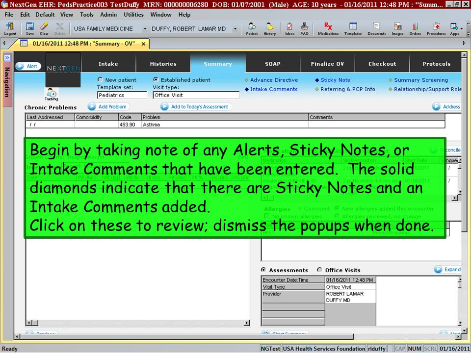 Begin by taking note of any Alerts, Sticky Notes, or Intake Comments that have been entered. The solid diamonds indicate that there are Sticky Notes and an Intake Comments added.