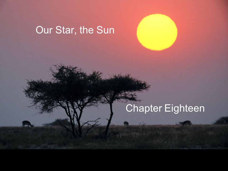 Our Star, the Sun Chapter Eighteen