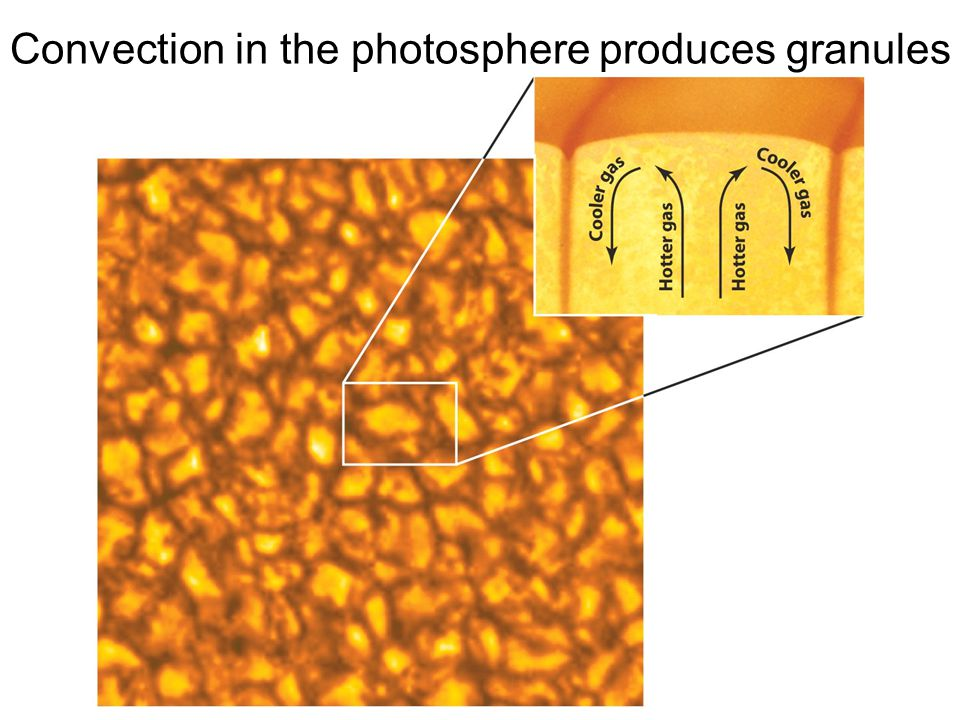 Convection in the photosphere produces granules