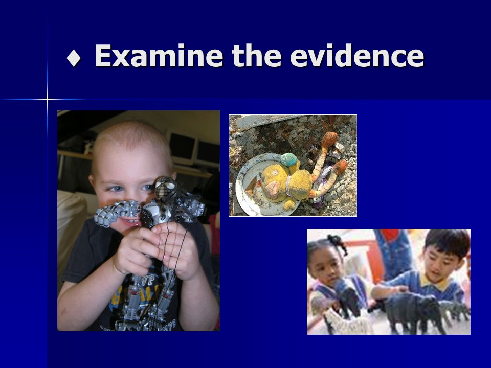  Examine the evidence