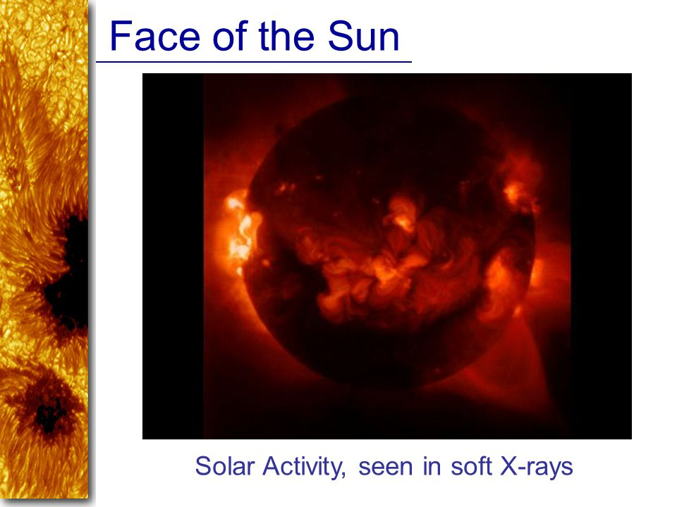 Face of the Sun Solar Activity, seen in soft X-rays