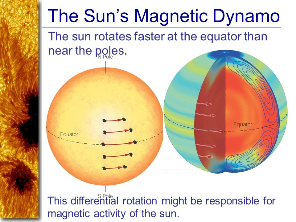 The Sun's Magnetic Dynamo