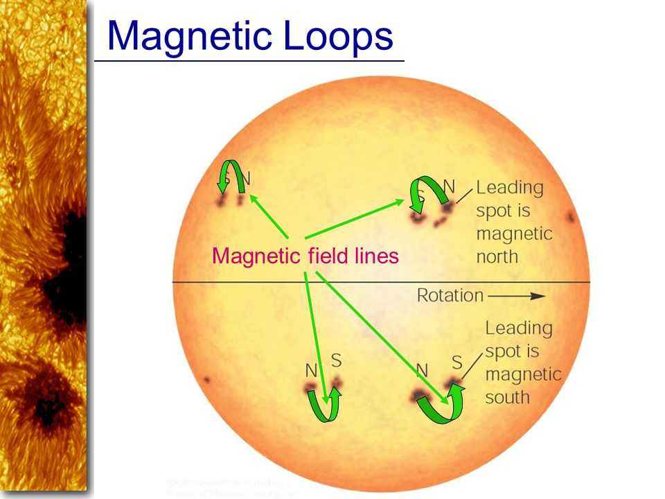 Magnetic Loops Magnetic field lines