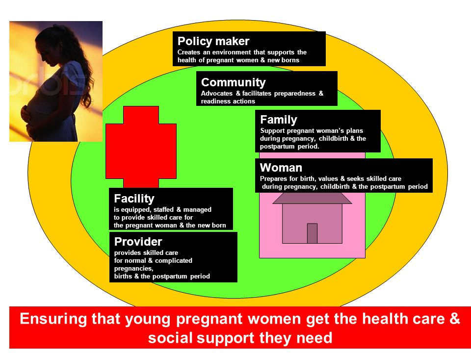Policy maker Creates an environment that supports the health of pregnant women & new borns. Community.