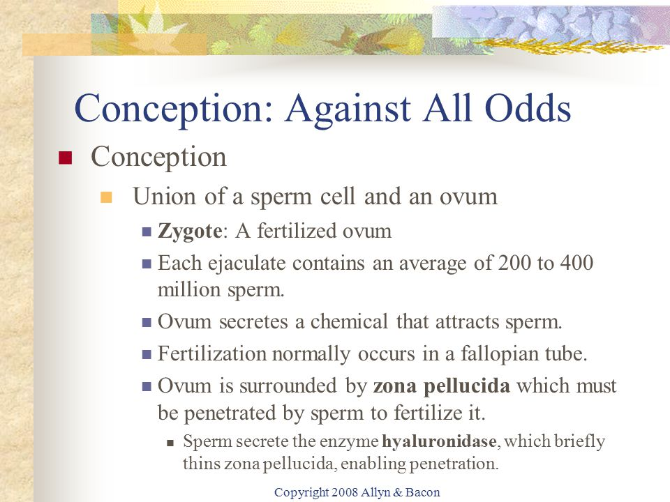 Conception: Against All Odds