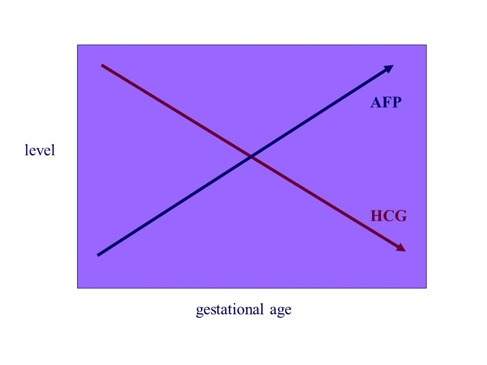 AFP level HCG gestational age