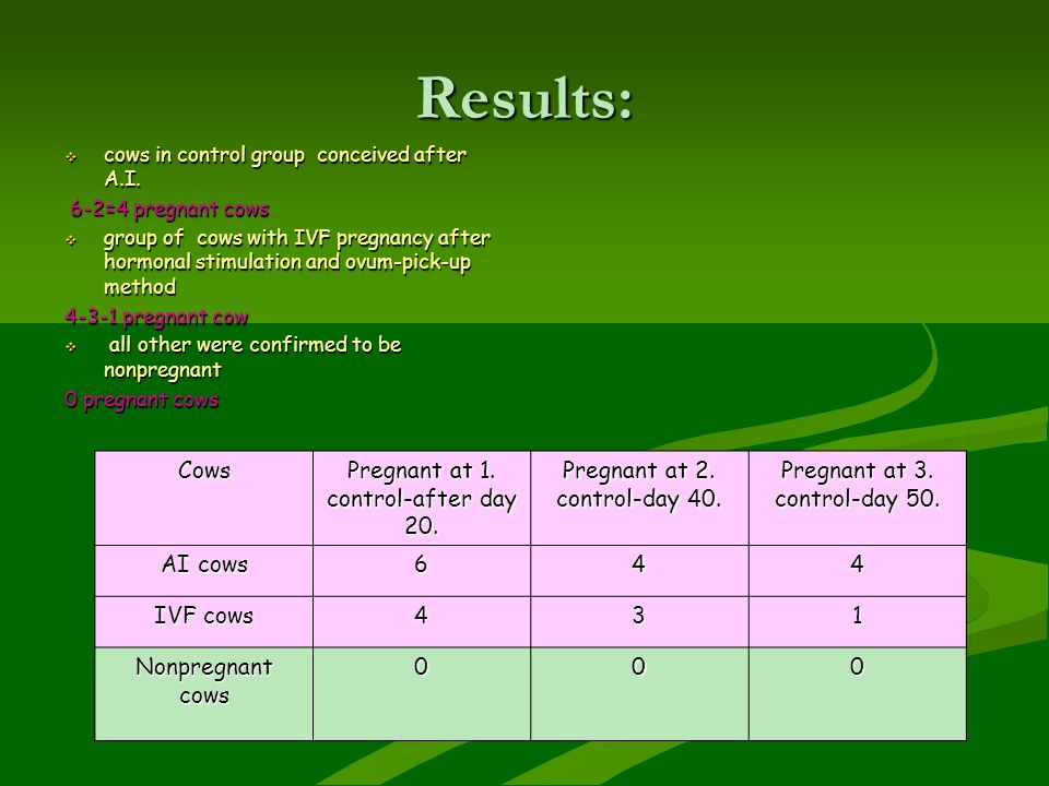 Results: Cows Pregnant at 1. control-after day 20.