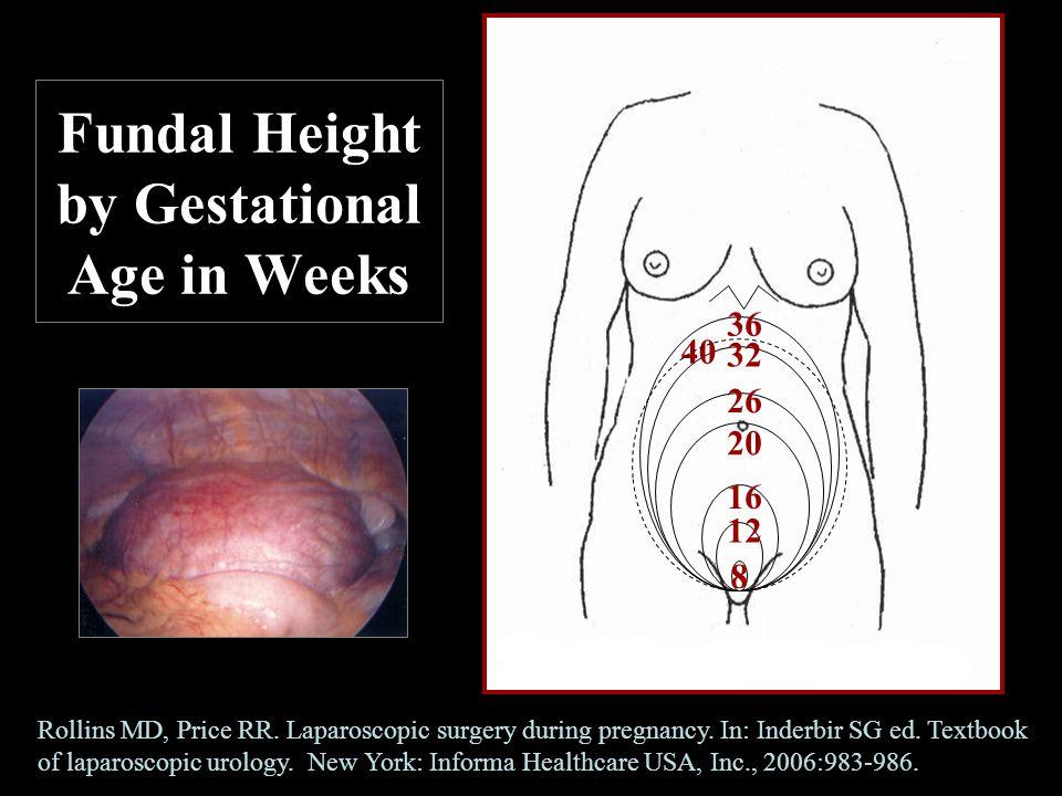 Fundal Height by Gestational Age in Weeks