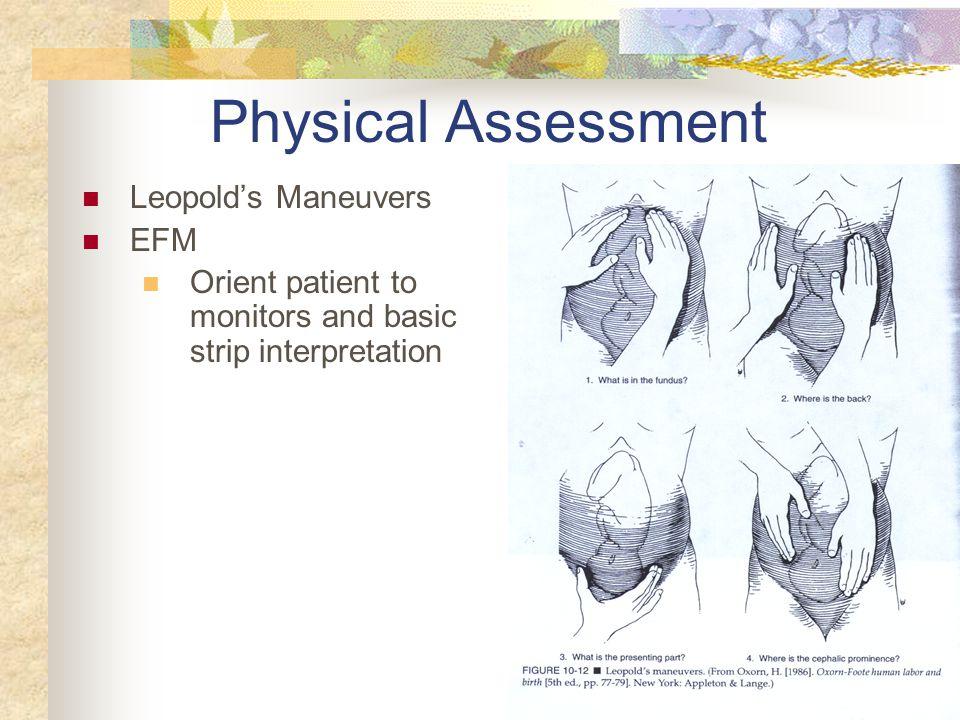 Physical Assessment Leopold's Maneuvers EFM
