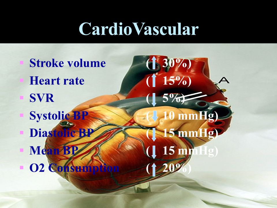 CardioVascular Stroke volume Heart rate SVR Systolic BP Diastolic BP