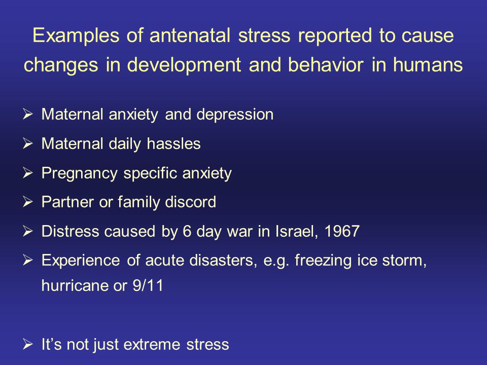 Examples of antenatal stress reported to cause changes in development and behavior in humans