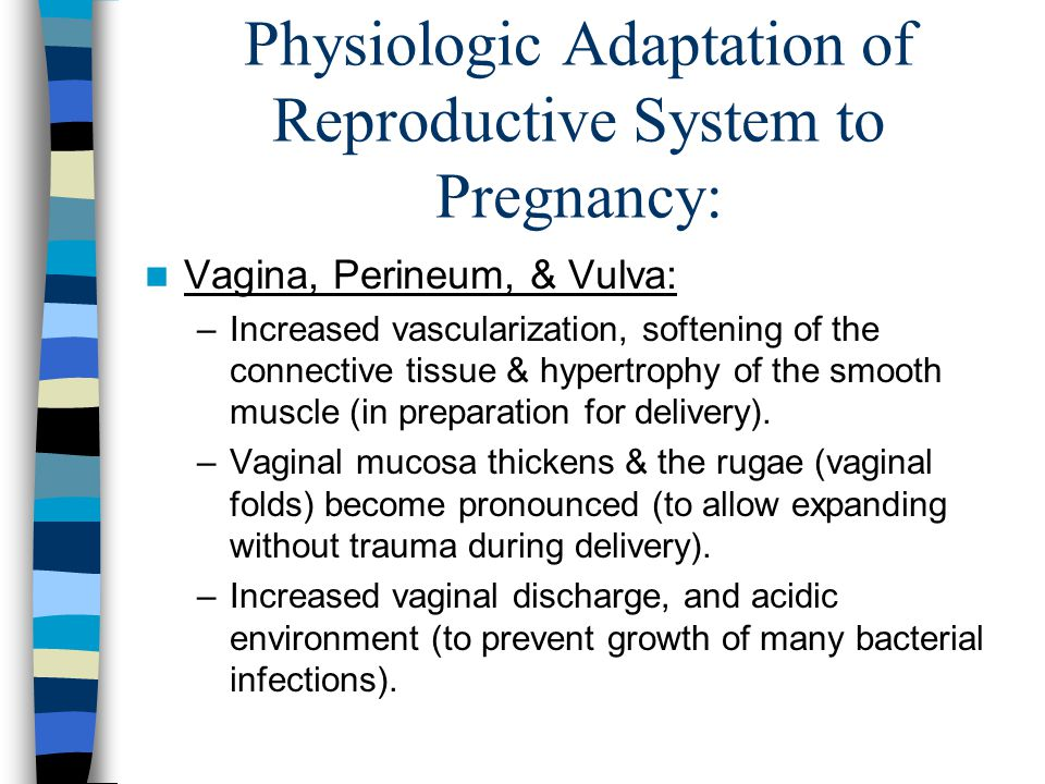Physiologic Adaptation of Reproductive System to Pregnancy: