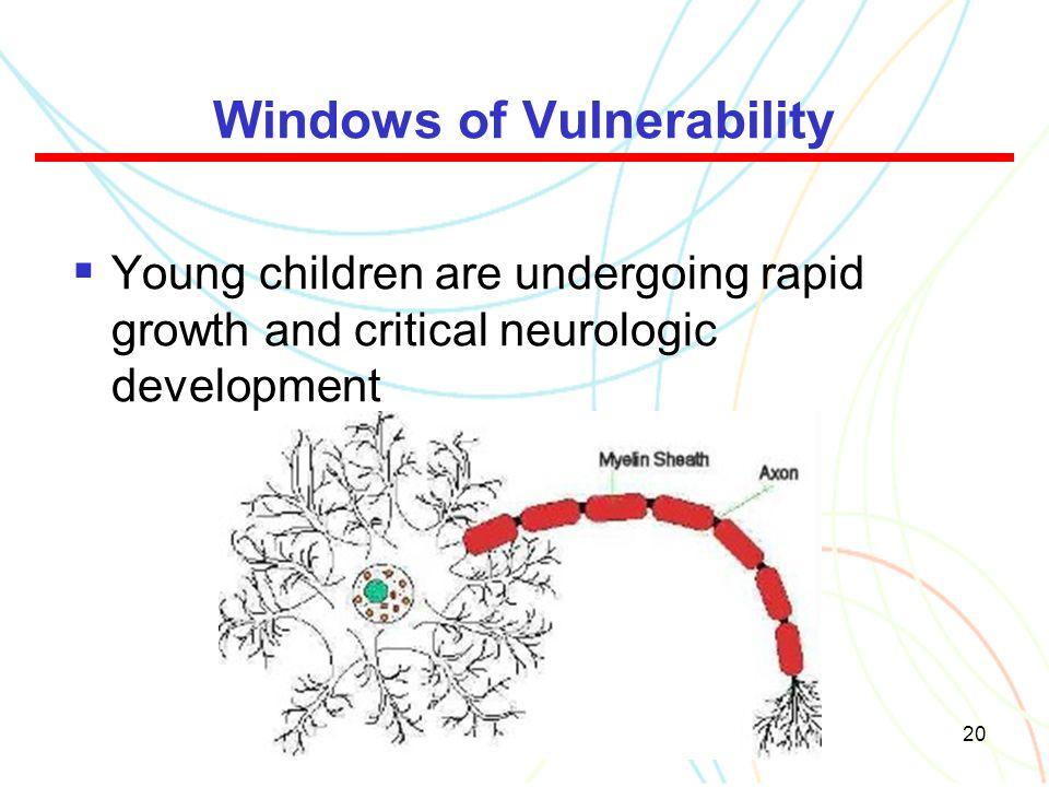 Windows of Vulnerability