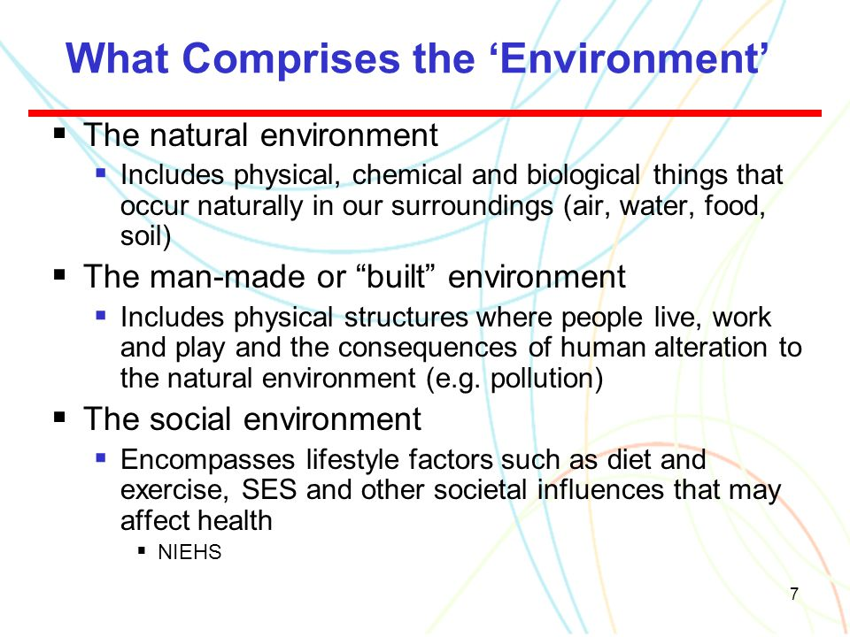What Comprises the 'Environment'