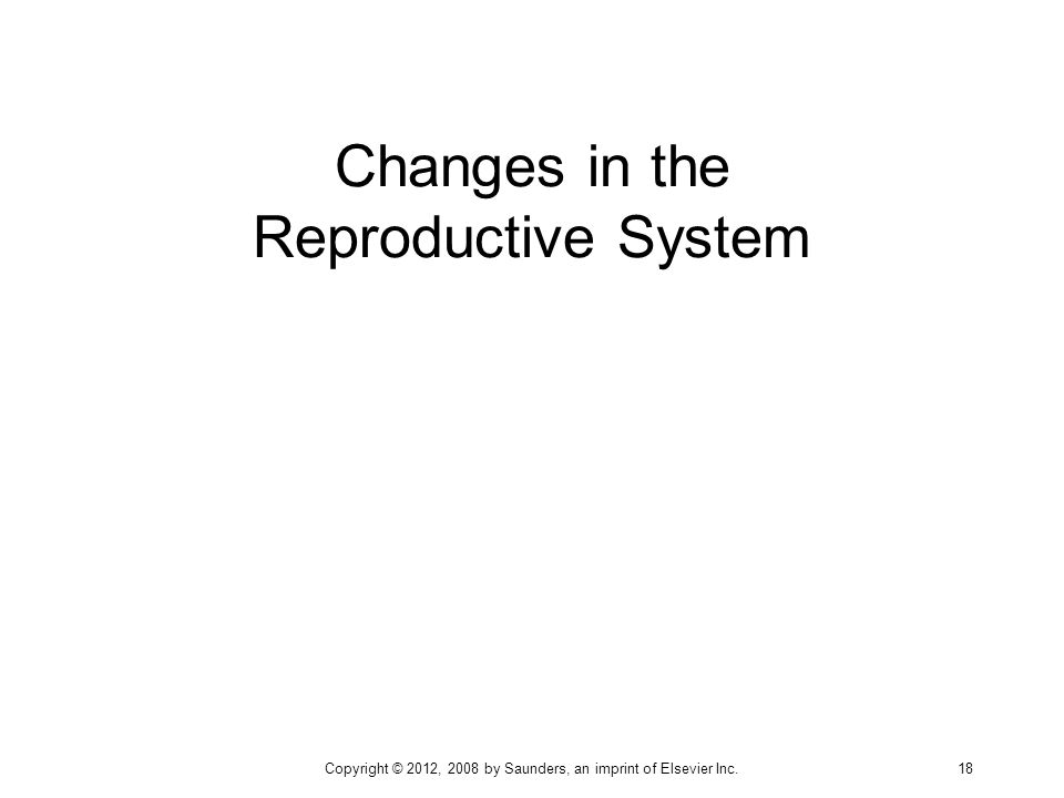 Changes in the Reproductive System