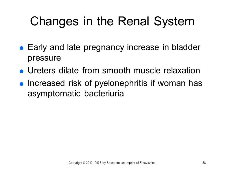 Changes in the Renal System