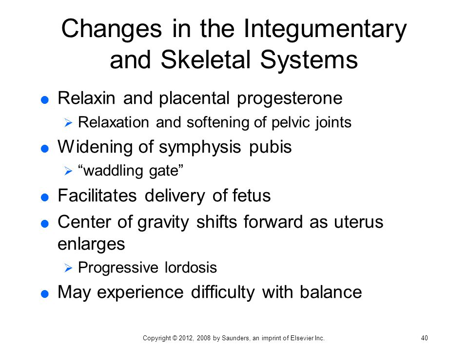 Changes in the Integumentary and Skeletal Systems