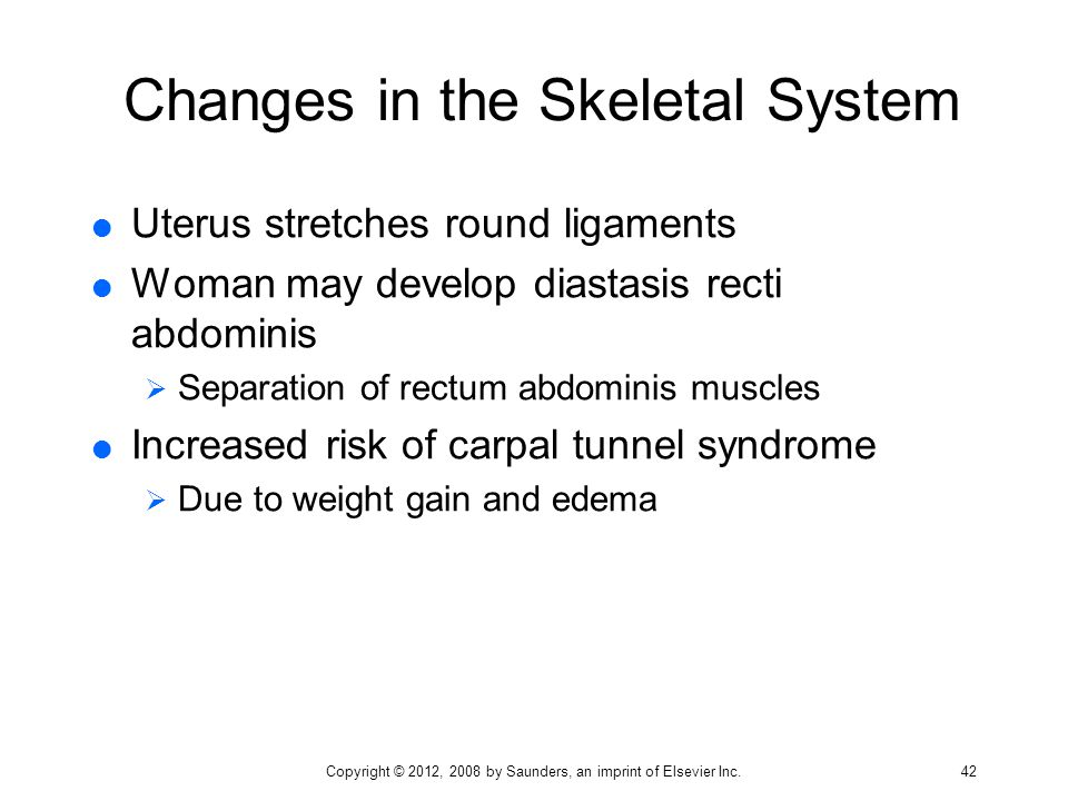 Changes in the Skeletal System