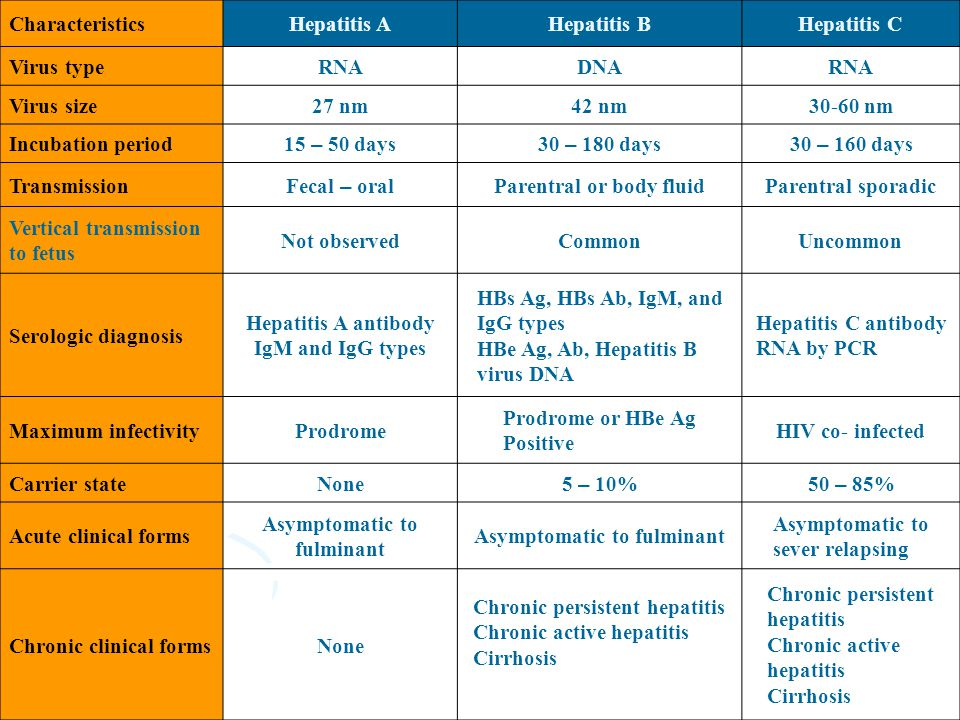 Hepatitis A antibody IgM and IgG types