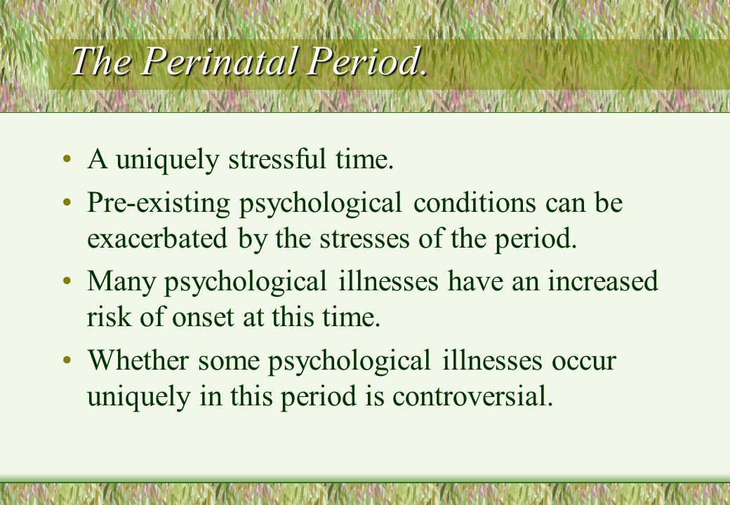The Perinatal Period. A uniquely stressful time.