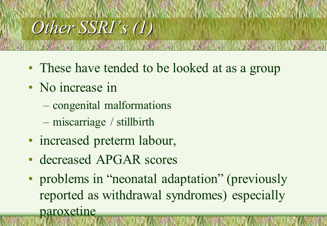 Other SSRI's (1) These have tended to be looked at as a group