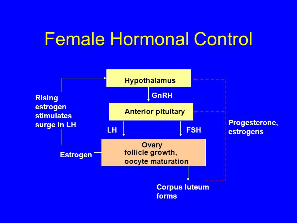 Female Hormonal Control