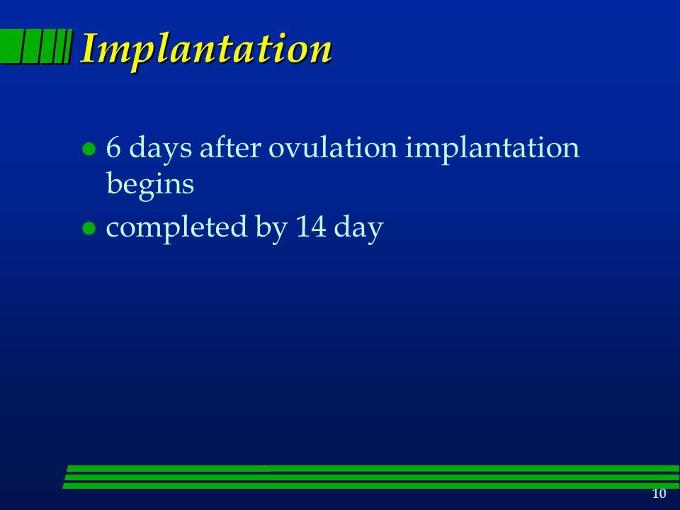 Implantation 6 days after ovulation implantation begins