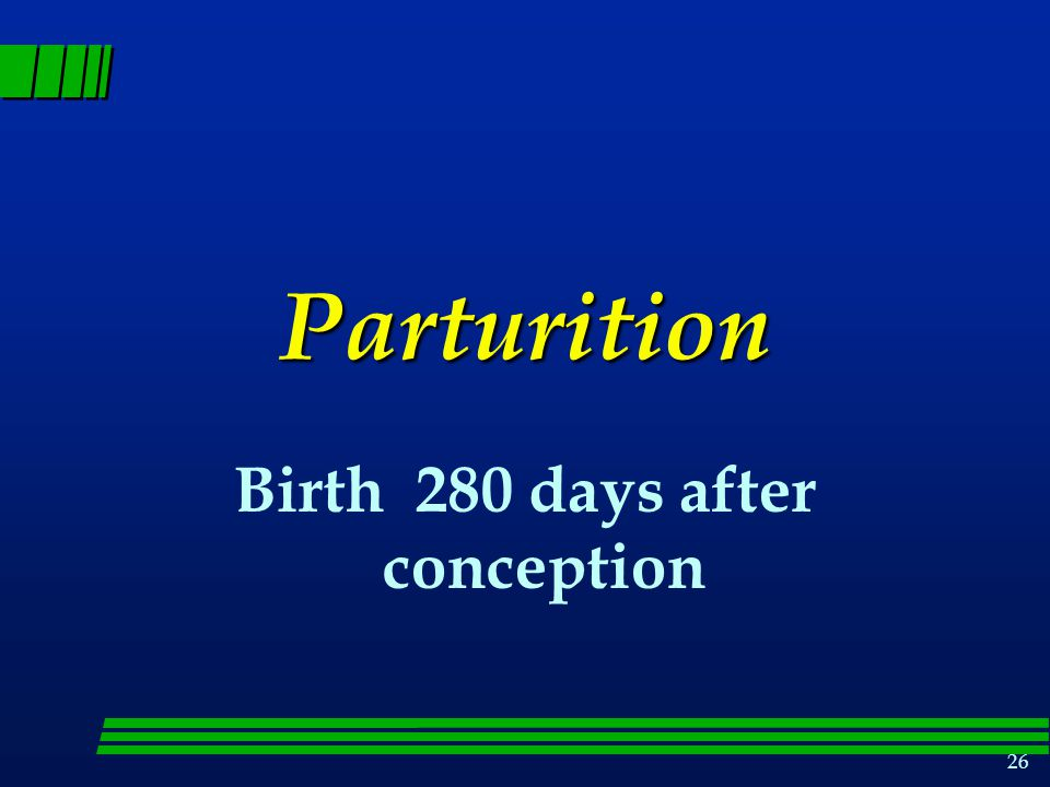 Birth 280 days after conception