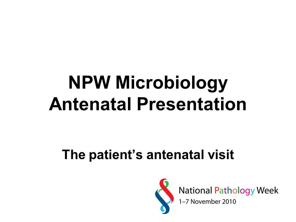 NPW Microbiology Antenatal Presentation