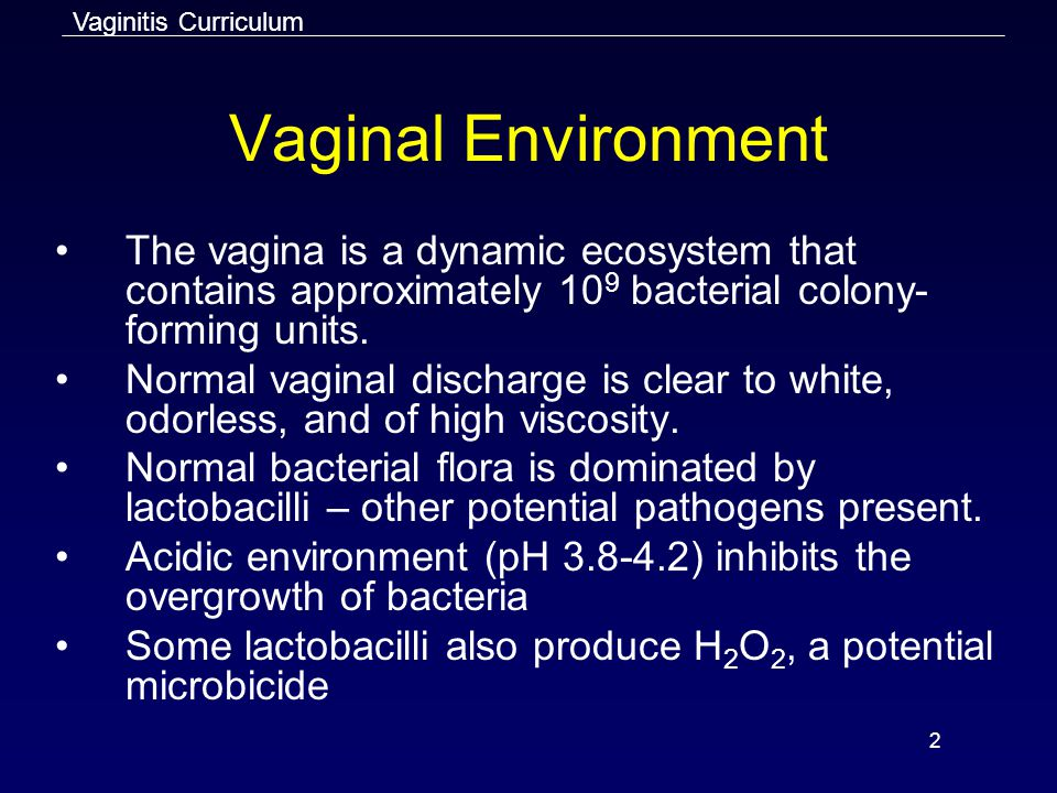 Vaginitis Curriculum Vaginal Environment. The vagina is a dynamic ecosystem that contains approximately 109 bacterial colony-forming units.