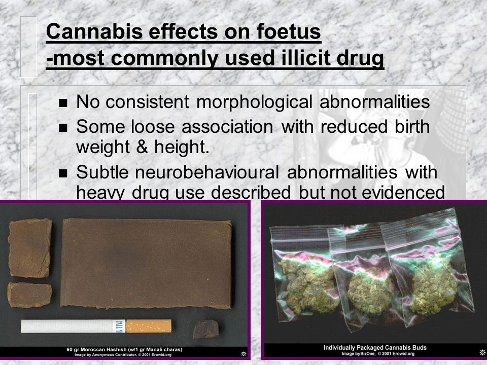 Cannabis effects on foetus -most commonly used illicit drug