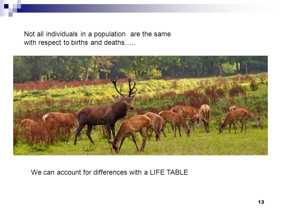 Not all individuals in a population are the same with respect to births and deaths…..