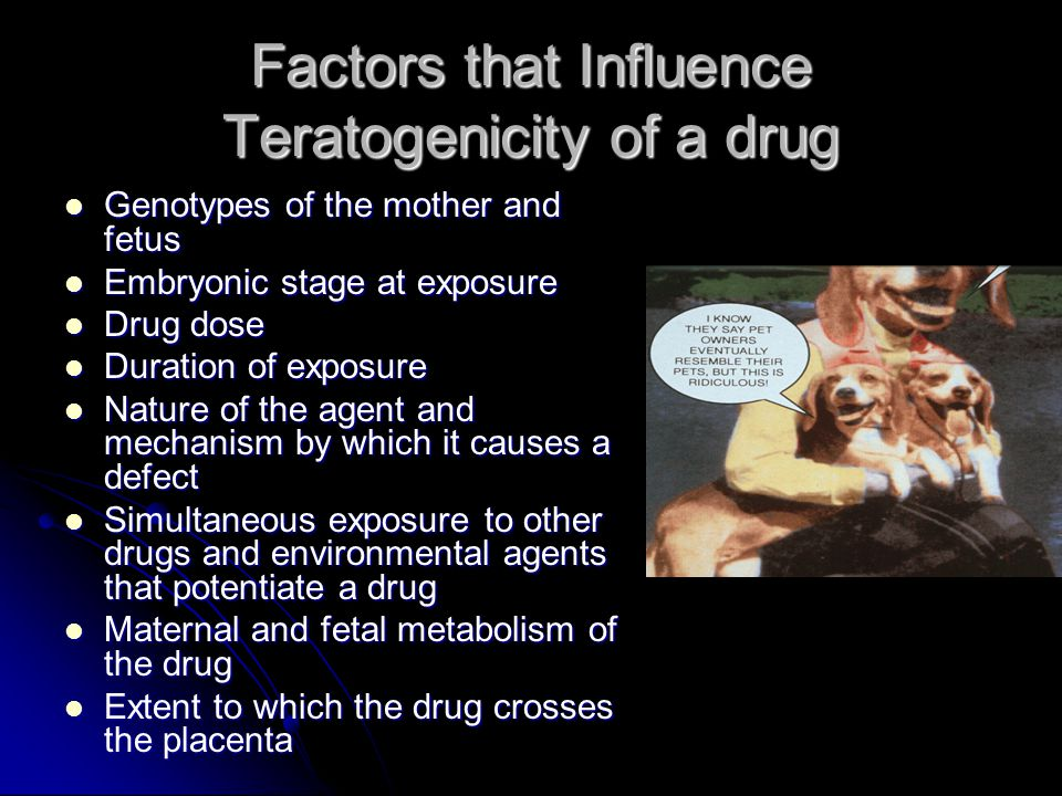 Factors that Influence Teratogenicity of a drug