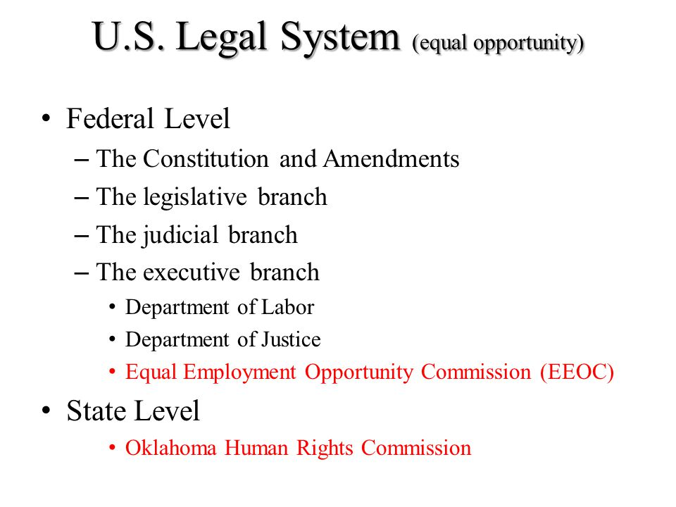 U.S. Legal System (equal opportunity)