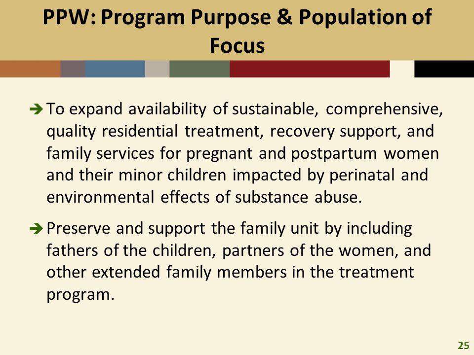PPW: Program Purpose & Population of Focus