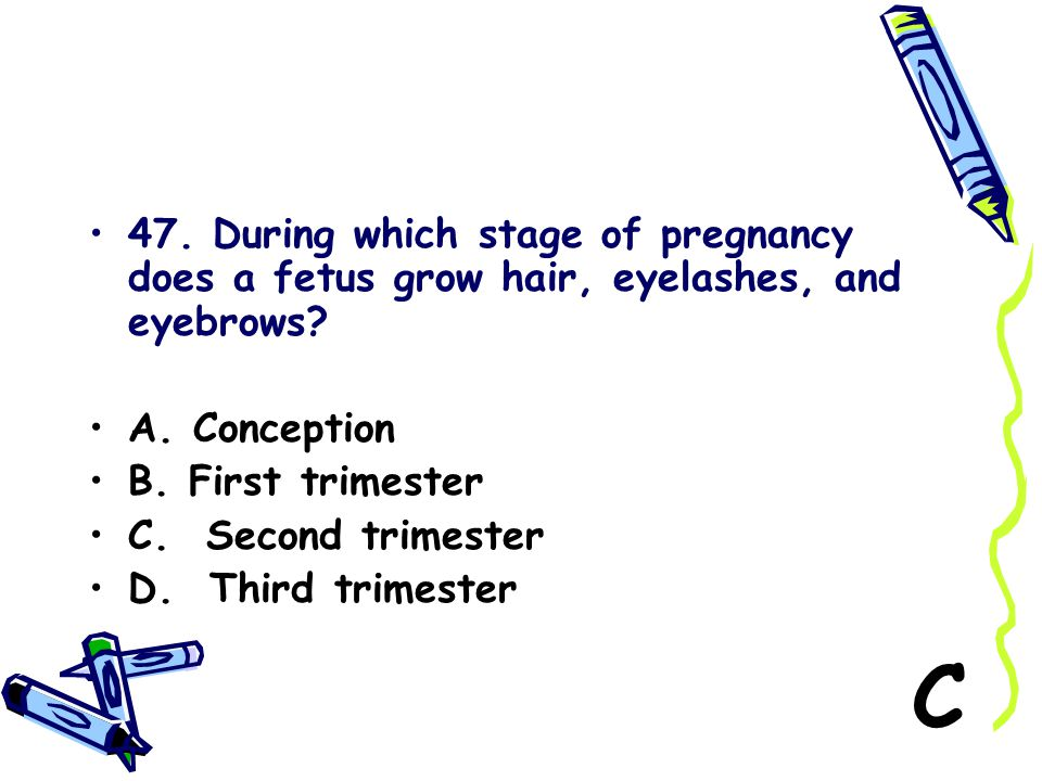 47. During which stage of pregnancy does a fetus grow hair, eyelashes, and eyebrows