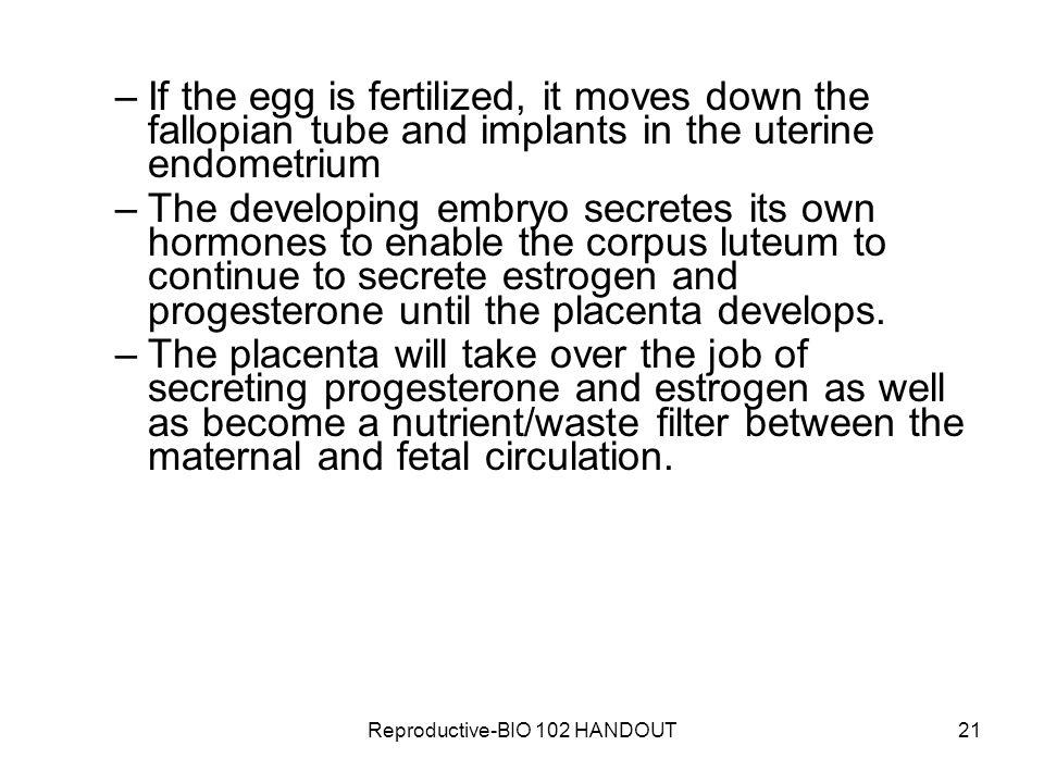 Reproductive-BIO 102 HANDOUT