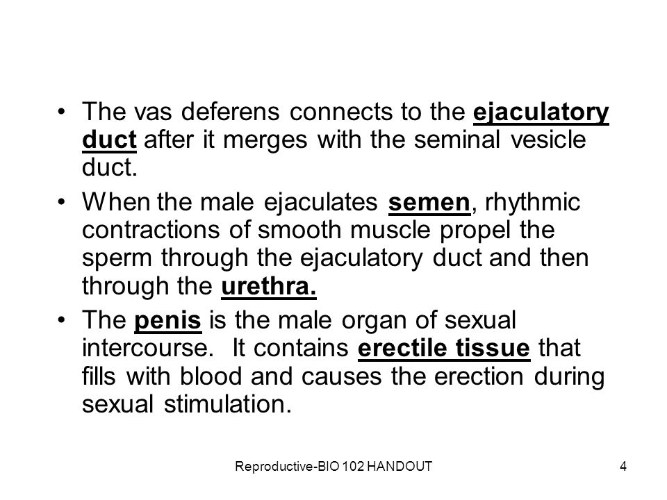 Sperm causes contractions very skinny
