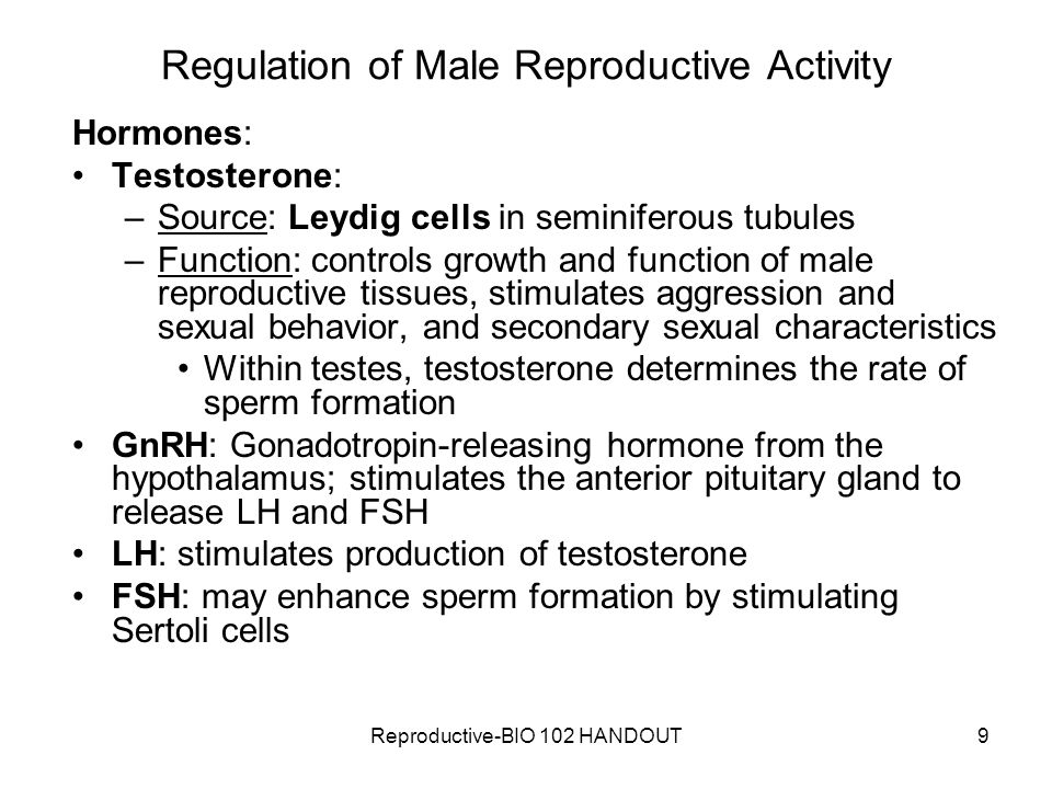 Regulation of Male Reproductive Activity