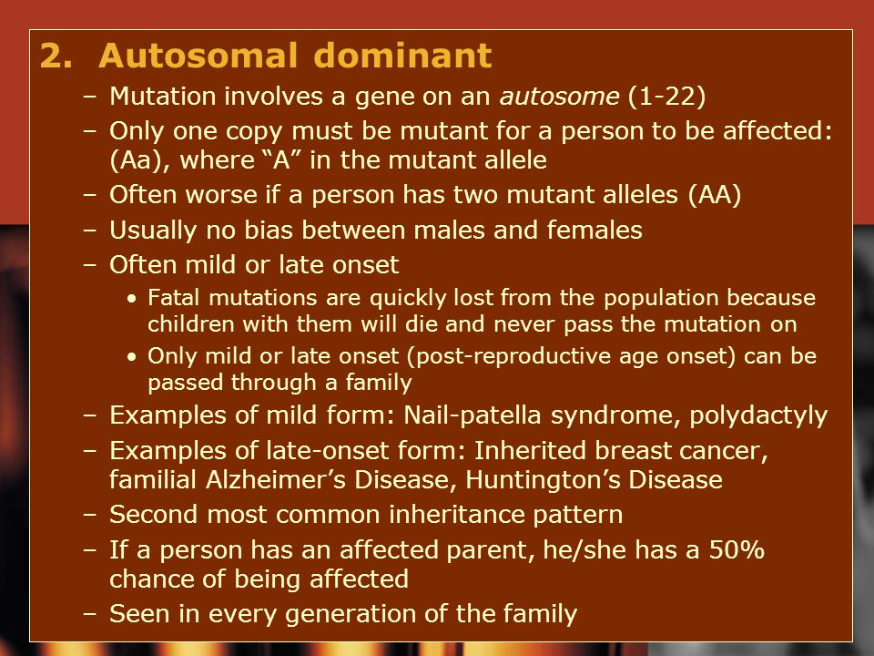2. Autosomal dominant Mutation involves a gene on an autosome (1-22)